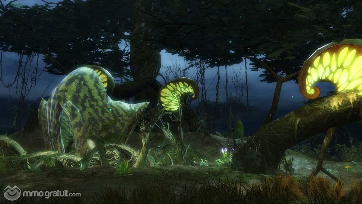 Cliquez sur l'image pour la voir en taille réelleNom : Guild Wars 2 128 copia.jpgAffichages : 124Taille : 116,7 KoID : 8958