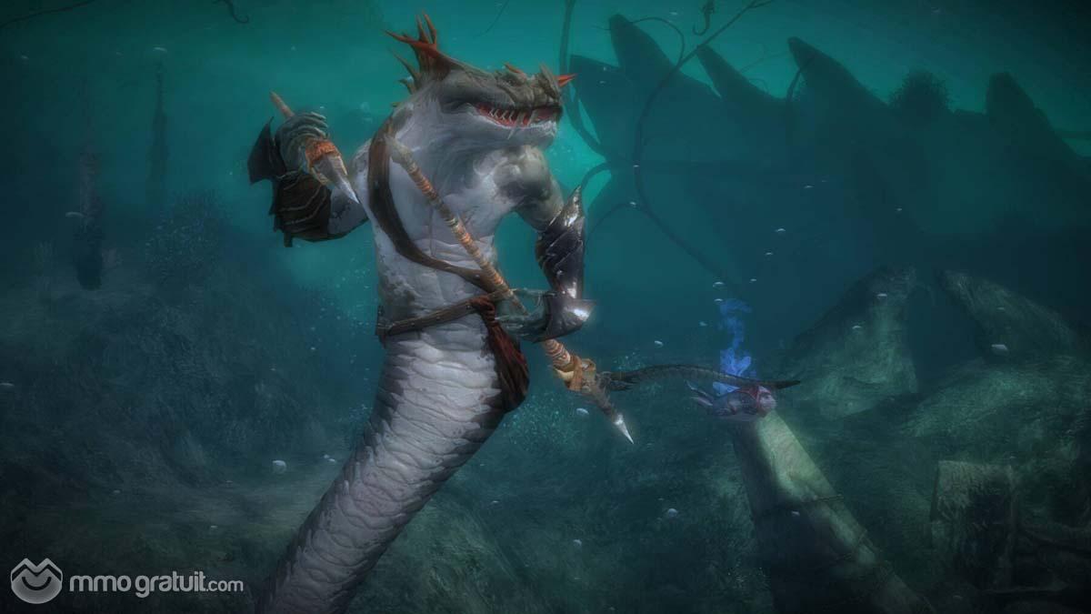 Cliquez sur l'image pour la voir en taille réelleNom : Guild Wars 2 115 copia.jpgAffichages : 123Taille : 63,0 KoID : 8971