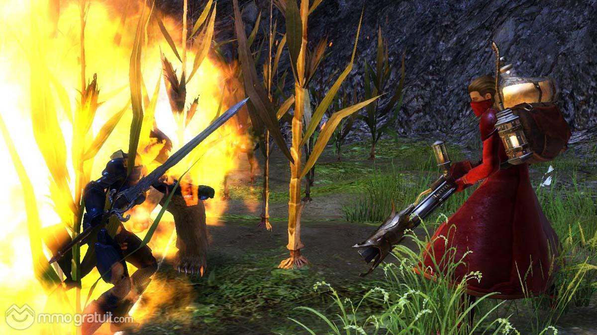Cliquez sur l'image pour la voir en taille réelleNom : Guild Wars 2 109 copia.jpgAffichages : 125Taille : 154,8 KoID : 9005