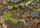 Stronghold Kingdoms screenshot 5