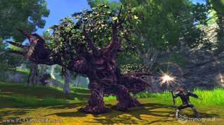 raiderz_assassin_update_screenshot_020 copia_1