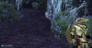 EverQuest 2 review04 copia